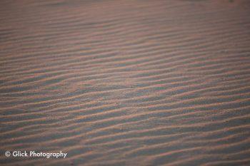 Maroubra Desert
