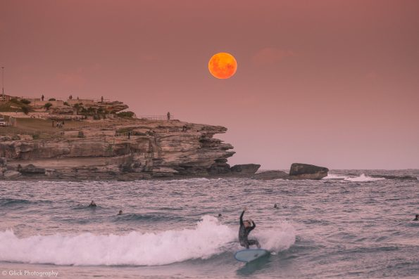 Full Moon Surfer
